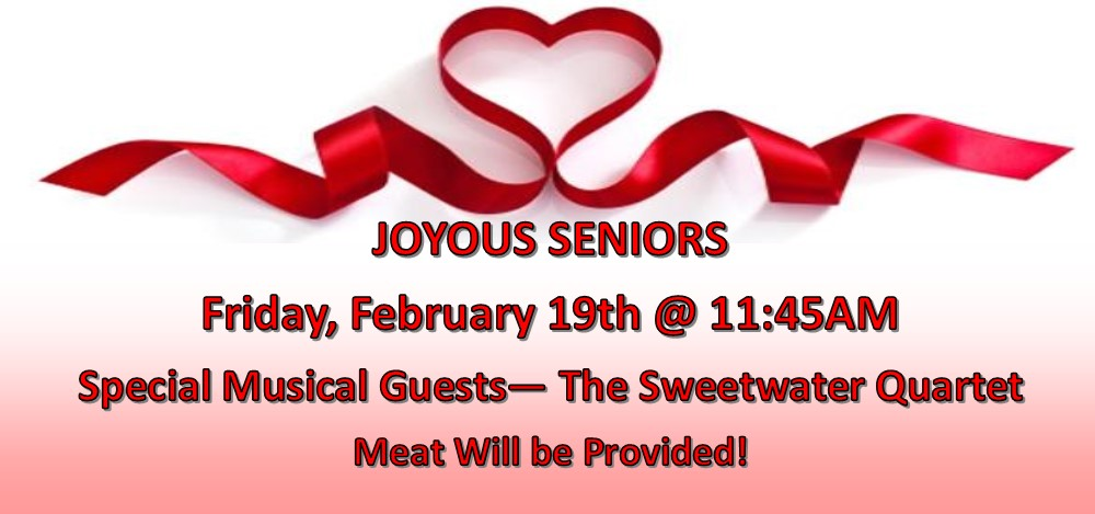 Joyous Seniors Feb 2016